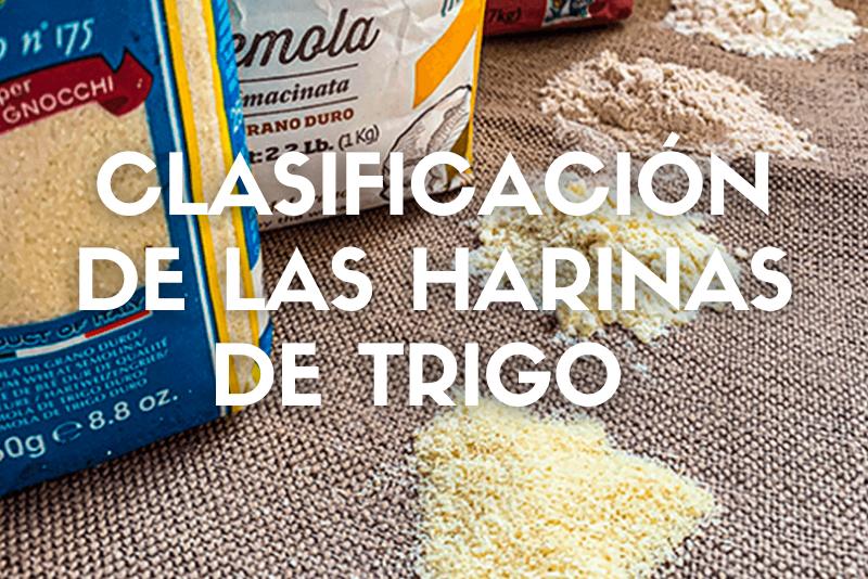 Clasificacion de las harinas de trigo_Cover_Web